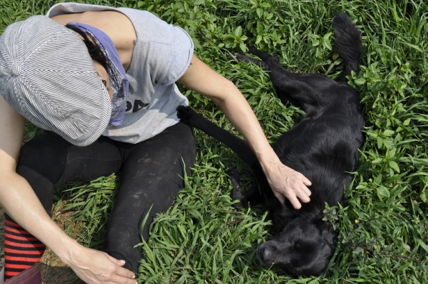 While Josie loved on Five, this pup relaxed in the grass and waited for her attention.