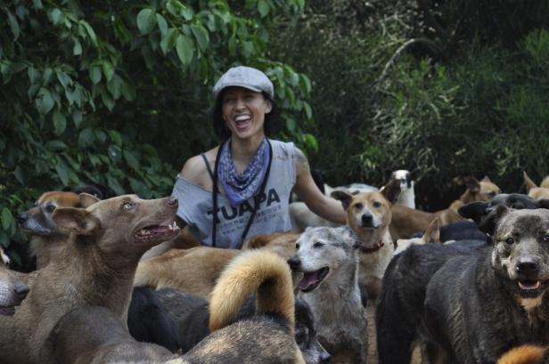 Josie and the Puppydogs